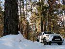 Lexus RX: Только выигрывать - фотография 37